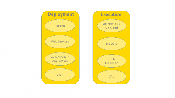 Deployment Options in a Data Science Project