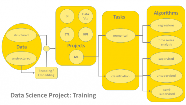 Training Options in a Data Science Project